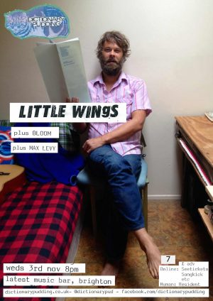 little-wings-poster